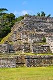 Temple de Maya de Belize images libres de droits