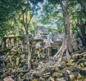 Temple de Mealea de Beng Mealea ou de bondon Le Cambodge cambodia photo stock
