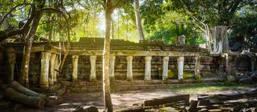 Temple de Mealea de Beng Mealea ou de bondon Le Cambodge cambodia Panorama photo libre de droits