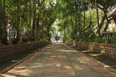 Temple de pacin de Chiang Mai Images libres de droits
