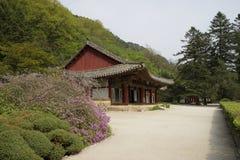 Temple de Pohyonsa, DPRK (Corée du Nord) Photographie stock libre de droits