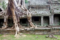 Temple de Preah Khan, Cambodge Photo libre de droits
