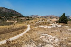 Temple de Segesta Images libres de droits