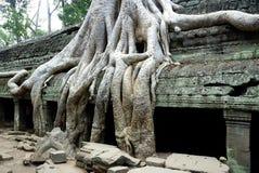 Temple de Siem Reap image libre de droits