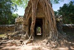 Temple de som de Ta, Angkor, Cambodge Photographie stock libre de droits