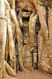 Temple de Ta Prohm Image libre de droits