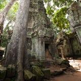 Temple de Ta Prohm Photos libres de droits