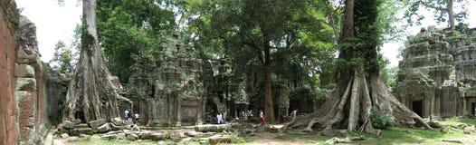 Temple de Ta Prohm, Cambodge Photos libres de droits