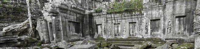 Temple de Ta Prohm, Cambodge Photos stock
