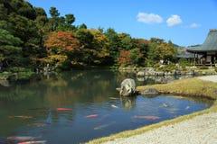Temple de Tenryuji à Kyoto Photographie stock libre de droits