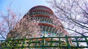 Temple de Tien-yuans avec des fleurs de cerisier dans la nouvelle ville de Taïpeh, Taïwan Image libre de droits