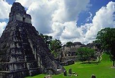 Temple de tikal Image stock