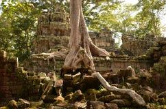 Temple de Tombraider images libres de droits