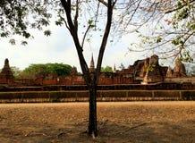 Temple de Wat Mahathat temple contenant des reliques de Bouddha Ayutthaya photos stock
