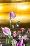 Temple de Wat PO à Bangkok Images libres de droits