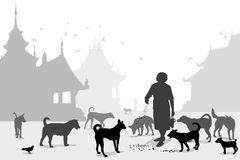 Temple dog carer. Editable vector illustration of a woman feeding stray dogs in a Buddhist temple where many abandoned pets end up Royalty Free Stock Photography