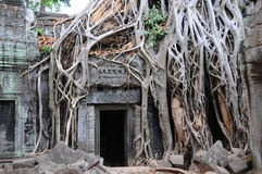 Temple doorway, Ankor Wat Stock Photography
