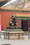 Temple dragon, or lion. Temple guard, dragon or lion, bronze statues, the male holds the earth, the female the child Stock Images