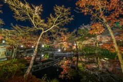 Temple Eikando at night. The Eikando temple night illumination during the month of November Royalty Free Stock Image