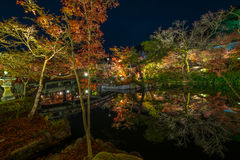 Temple Eikando at night. The Eikando temple night illumination during the month of November Stock Photo