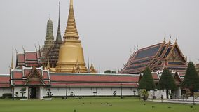 Temple of the Emerald Buddha in Bangkok, Thailand stock video footage