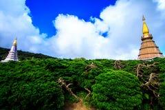 Temple et forêt Images libres de droits