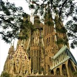 The Temple Expiatori de la Sagrada Família and trees in Barcelona city, Spain. Branches, leaves, enchanting architecture and art, fairytale and genius royalty free stock image
