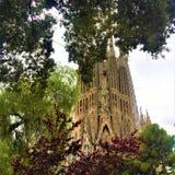 The Temple Expiatori de la Sagrada Familia and nature in Barcelona city, Spain stock photo