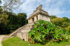 Temple and Foliage Royalty Free Stock Images