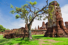 Temple in the former royal city of Ayutthaya Stock Photography