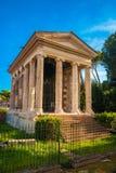 Temple of Fortuna Virilis Royalty Free Stock Image
