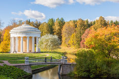 Temple of Friendship and  bridge in Pavlovsk park in autumn Stock Images