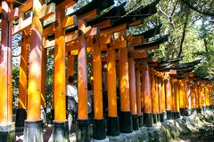 Temple of Fushimi Inari-taisia Stock Images