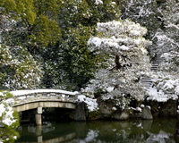 Temple Garden. In Kyoto in Winter Stock Images