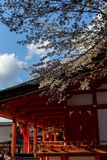 Temple Gate in Kyoto in the spring in sunny weather. April royalty free stock image