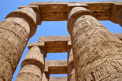 The temple of the god Amon Ra at Luxor. Columned hall of the temple of the god Amon Ra at Luxor Royalty Free Stock Photography