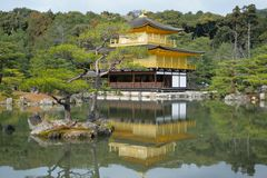 Temple of the Golden Pavilion Stock Images
