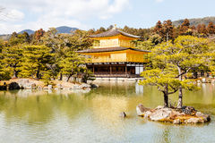 Temple of the golden pavilion Stock Photography