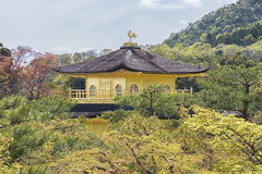 Temple of the golden Pavilion in Kyoto, Japan Royalty Free Stock Photos