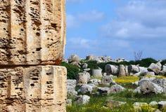 Temple grec doric antique dans Selinunte Photo libre de droits