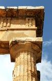 Temple grec doric antique dans Selinunte Images libres de droits