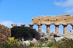 Temple grec doric antique dans Selinunte Photographie stock