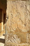 Temple of Hatshepsut Stock Image