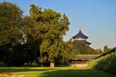 Temple of Heaven. Beijing, morning at Temple of Heaven Stock Image