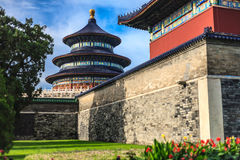 Temple of Heaven view from garden Royalty Free Stock Photos