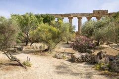 Temple of Hera - Agrigento - Sicily Royalty Free Stock Image