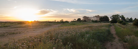 The Temple of Hera (Temple E) at Selinunte, Sicily Stock Photography