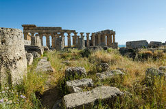 The Temple of Hera (Temple E) at Selinunte, Sicily Royalty Free Stock Photography