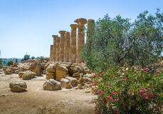 Temple of Heracles Dorian columns in the Valley of Temples - Agrigento, Sicily, Italy Stock Photos