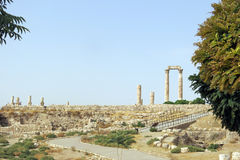 Temple of Hercules on the Citadel hill in Amman Royalty Free Stock Photography